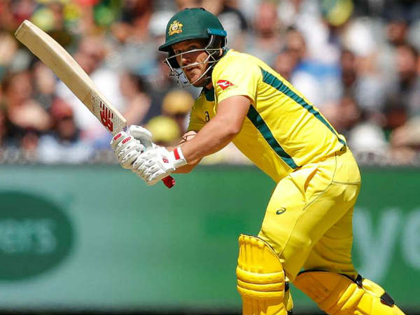 Aaron Finch Said That We Have Failed Because Our Role The Victory Is Not Good Enough