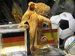 Football Octopus Paul Germany