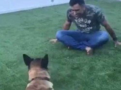 Dhoni Puts Video With His Pet Dog