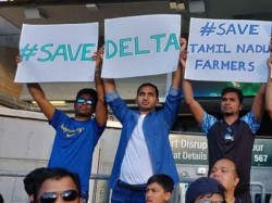 Gaja Relief Save Delta Posters Gets Huge Reach Australia Vs India Match