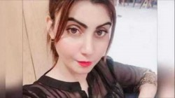 Famous Pakistani Actress Sehar Shinwari Asks Famous Cricketer To Be The Daddy Of Her Future Kids
