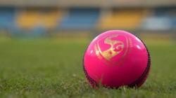 India Bangladesh Day And Night Match Kolkata Celebration