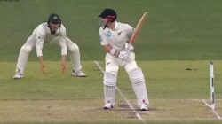 Australia Vs New Zealand Steve Smith Laughed Over Marnus Labuschagne Wicket Appeal