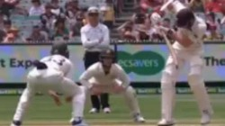 Australia Vs New Zealand Tim Paine Angered With Wrong Drs Technology