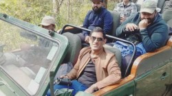Dhoni Visited Kanha National Park And Took Photos Of Tigers