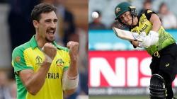 India Vs Australia Women S T20 Finals Starc Encourages His Wife Alyssa Healy