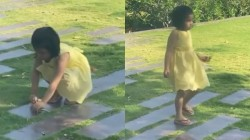 Ziva Dhoni Cleanes The Lawn In Her House
