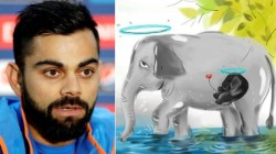 Virat Kohli Appalled By Killing Of Pregnant Elephant In Kerala