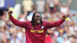 Ipl 2020 Chris Gayle Tests Covid 19 Negative After Attending Usain Bolt S Birthday Bash