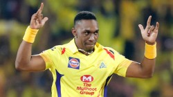 Dj Bravo Ruled Out Of The T20 Series Against New Zealand